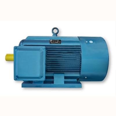 YTVF系列(IP55)三相变频高效永磁同步电动机(机座号:80-250)