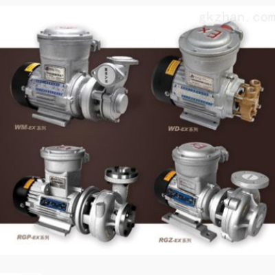 防爆高温泵,设备产品,动设备,泵,,,